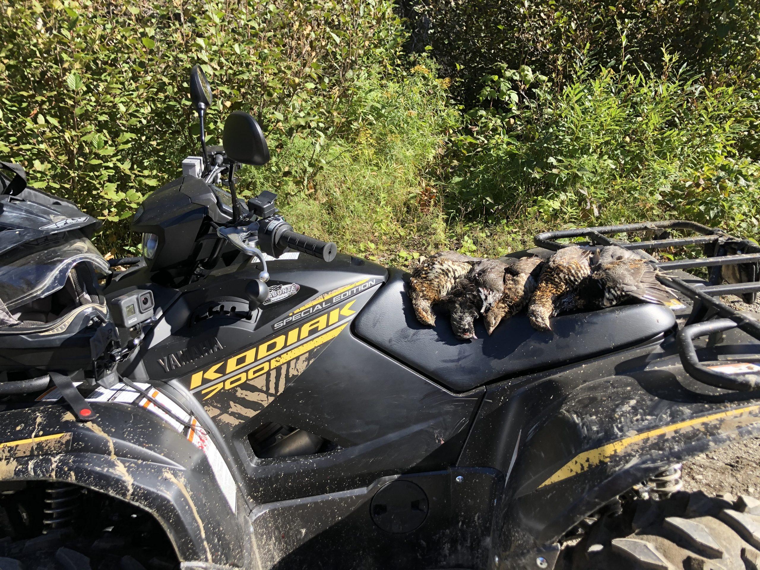 Avantage et Inconvénients des VTT à la chasse