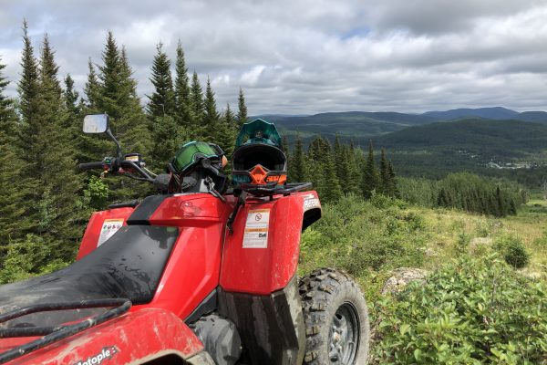 Arctic Cat Alterra 700 Trial